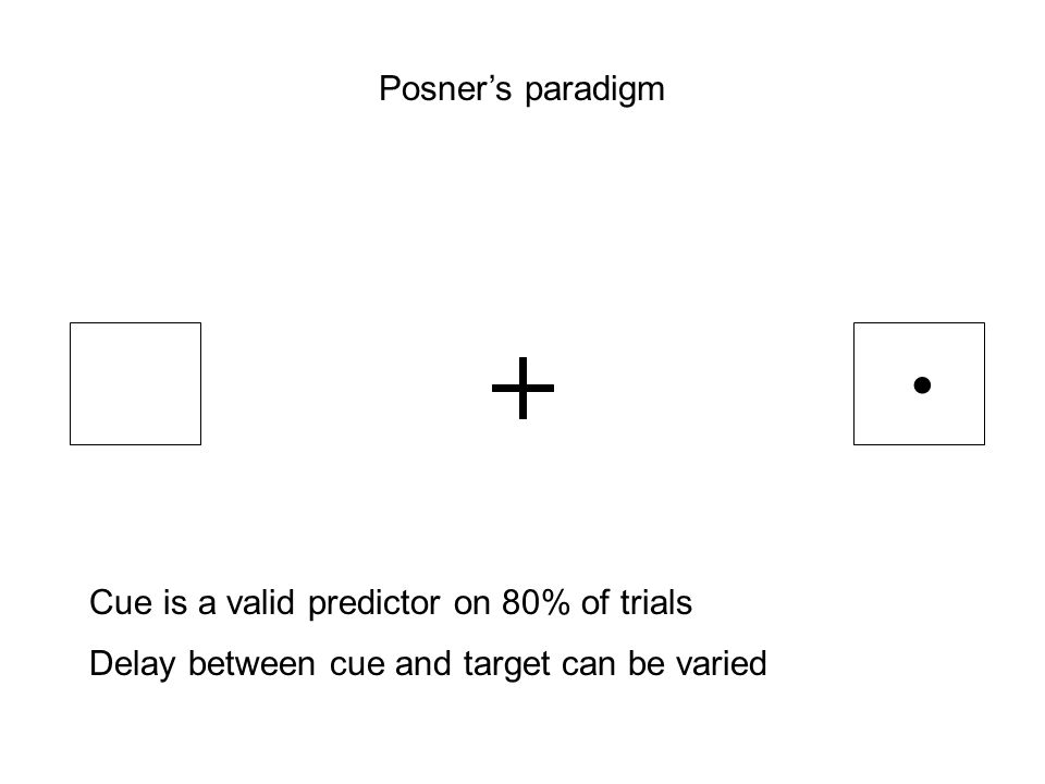 Posner's paradigm Cue is a valid predictor on 80% of trials Delay between cue and target can be varied