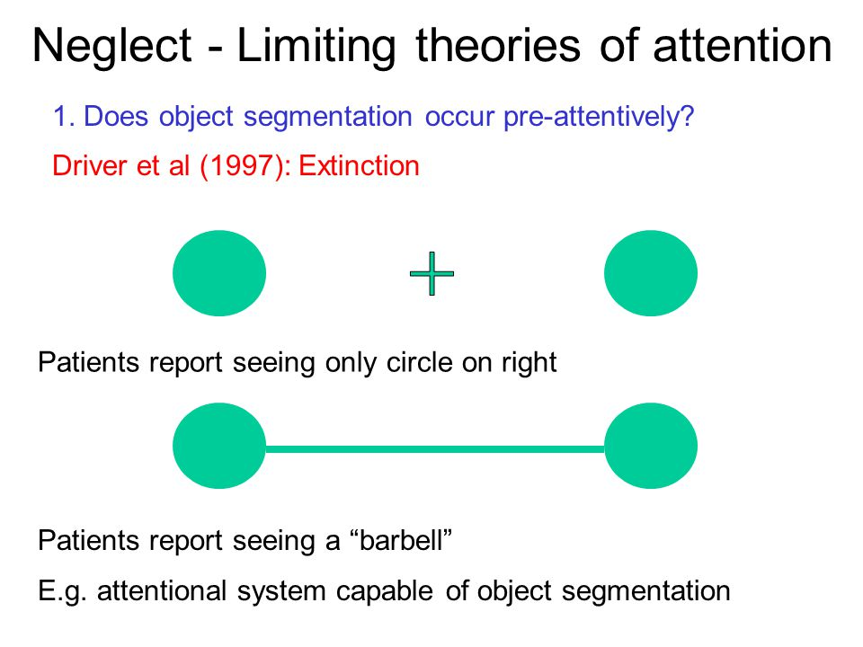 Neglect - Limiting theories of attention 1. Does object segmentation occur pre-attentively? Driver et al (1997): Extinction Patients report seeing onl