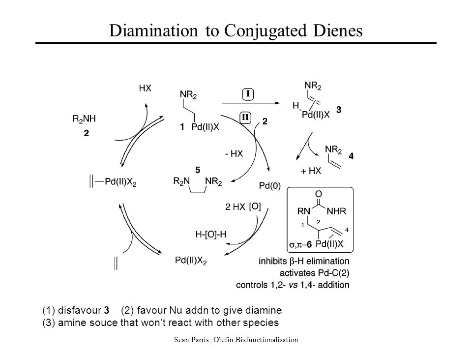 Sean Parris, Olefin Bisfunctionalisation Diamination to Conjugated Dienes (1) disfavour 3 (2) favour Nu addn to give diamine (3) amine souce that won'