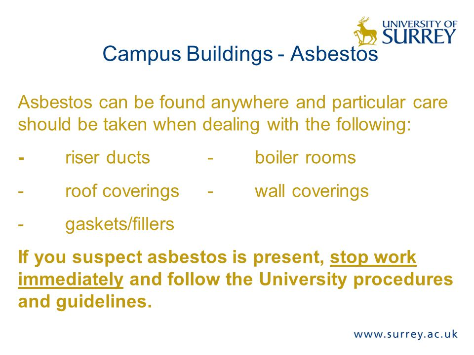 Campus Buildings - Asbestos Asbestos can be found anywhere and particular care should be taken when dealing with the following: -riser ducts-boiler rooms -roof coverings-wall coverings -gaskets/fillers If you suspect asbestos is present, stop work immediately and follow the University procedures and guidelines.