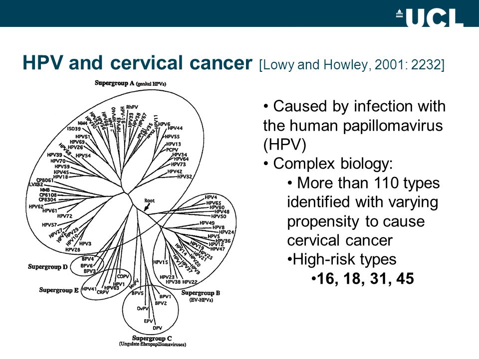 HPV and cervical cancer [Lowy and Howley, 2001: 2232] Caused by infection with the human papillomavirus (HPV) Complex biology: More than 110 types identified with varying propensity to cause cervical cancer High-risk types 16, 18, 31, 45