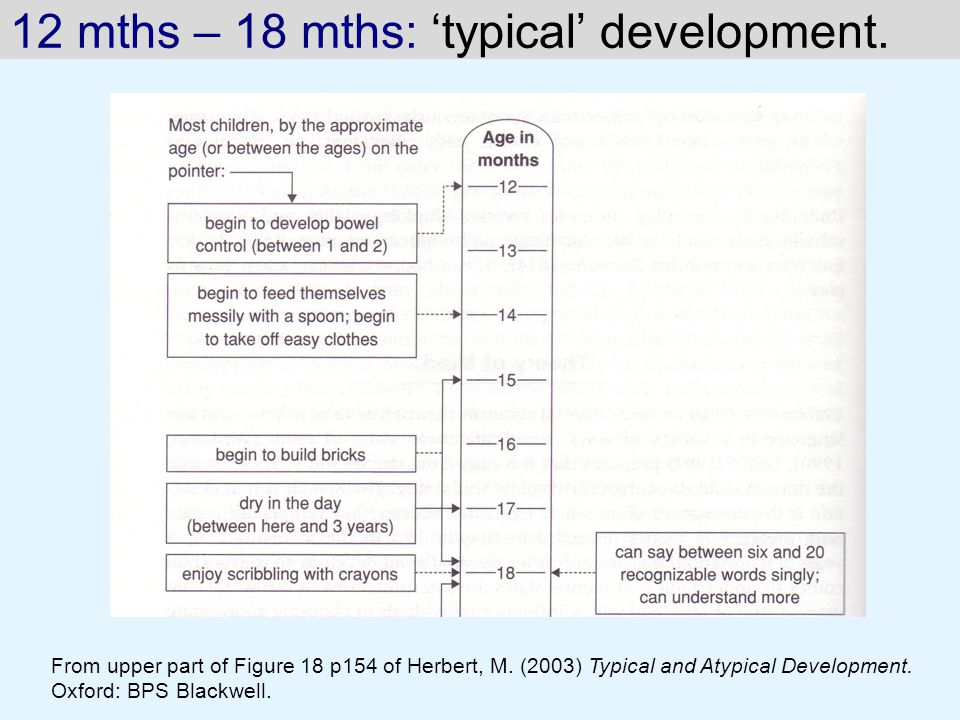 12 mths – 18 mths: 'typical' development.From upper part of Figure 18 p154 of Herbert, M.