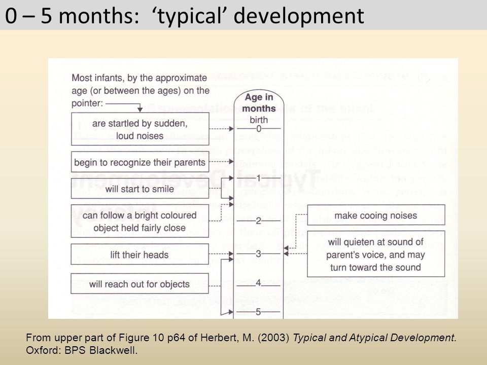 0 – 5 months: 'typical' development From upper part of Figure 10 p64 of Herbert, M. (2003) Typical and Atypical Development. Oxford: BPS Blackwell.