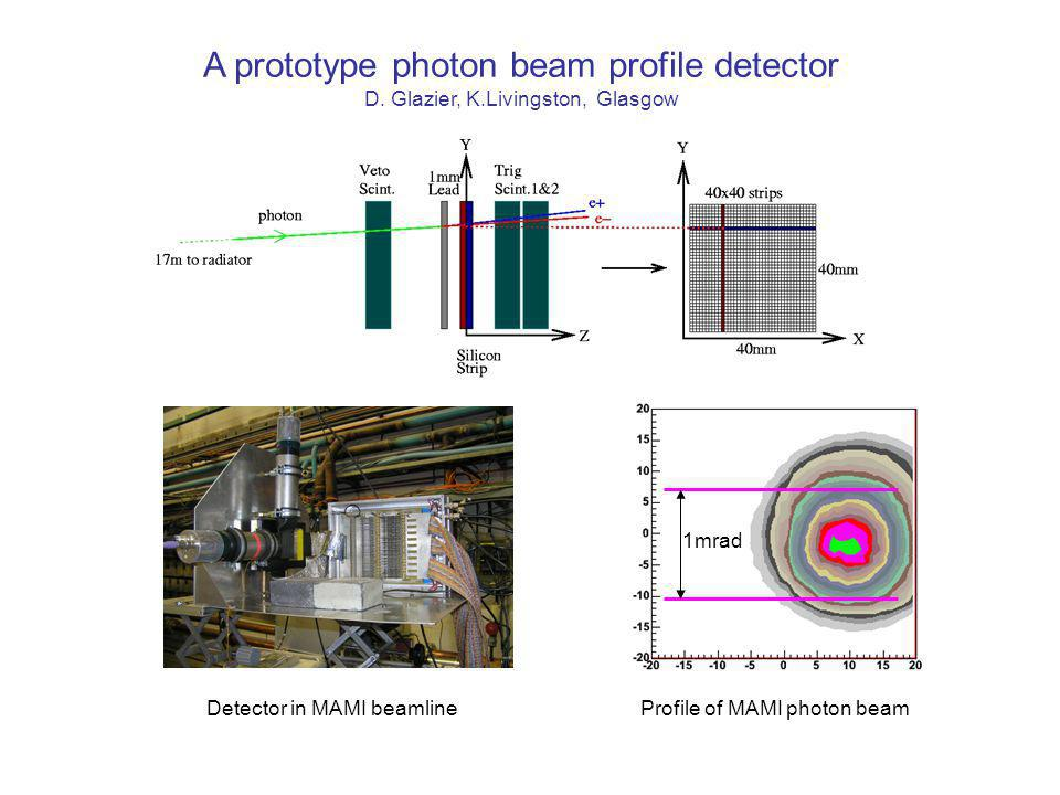 A prototype photon beam profile detector D.