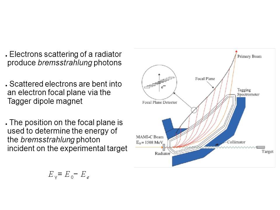 ● Electrons scattering of a radiator produce bremsstrahlung photons ● Scattered electrons are bent into an electron focal plane via the Tagger dipole magnet ● The position on the focal plane is used to determine the energy of the bremsstrahlung photon incident on the experimental target