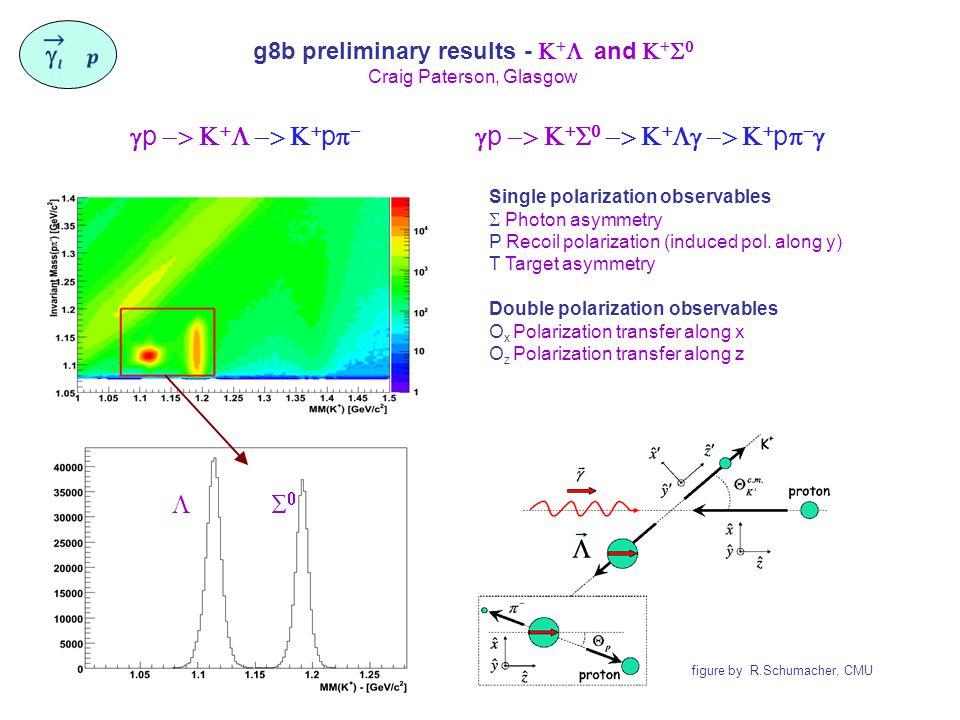g8b preliminary results -    and     Craig Paterson, Glasgow  p     p    p         p      Single polarization observables  Photon asymmetry P Recoil polarization (induced pol.