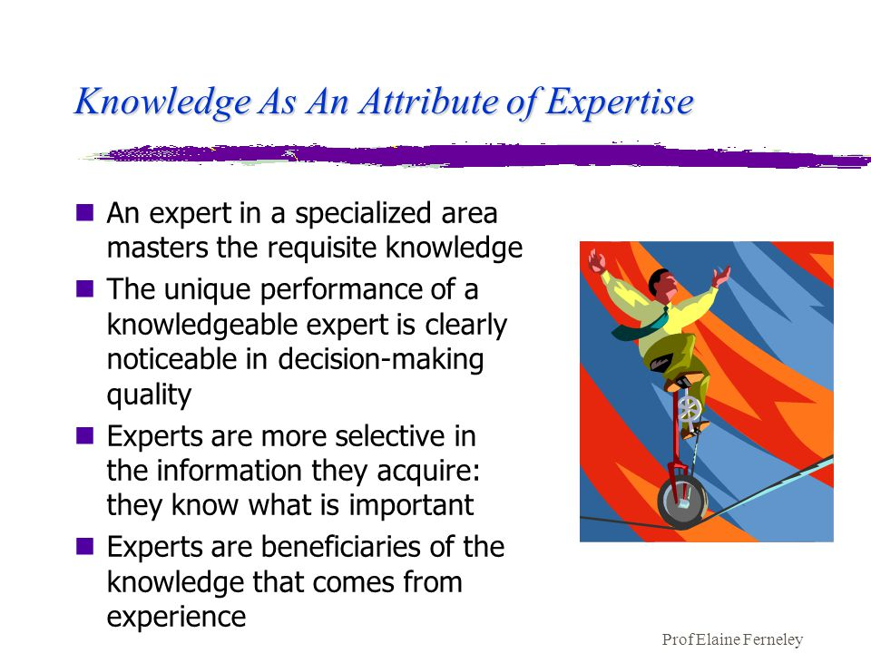 Prof Elaine Ferneley Knowledge As An Attribute of Expertise nAn expert in a specialized area masters the requisite knowledge nThe unique performance of a knowledgeable expert is clearly noticeable in decision-making quality nExperts are more selective in the information they acquire: they know what is important nExperts are beneficiaries of the knowledge that comes from experience