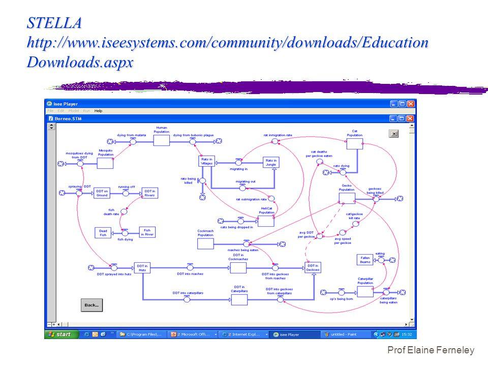 Prof Elaine Ferneley STELLA http://www.iseesystems.com/community/downloads/Education Downloads.aspx