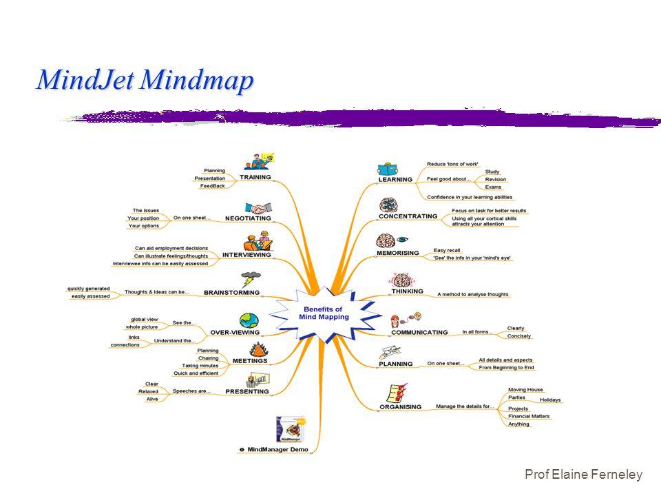 Prof Elaine Ferneley MindJet Mindmap