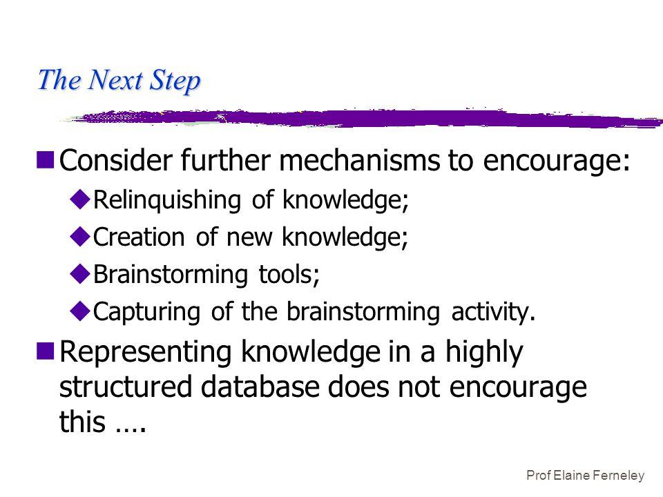 Prof Elaine Ferneley The Next Step nConsider further mechanisms to encourage: uRelinquishing of knowledge; uCreation of new knowledge; uBrainstorming tools; uCapturing of the brainstorming activity.