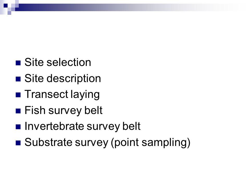 Site selection Site description Transect laying Fish survey belt Invertebrate survey belt Substrate survey (point sampling)