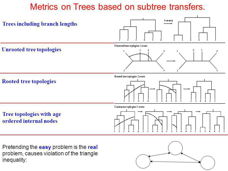 Metrics on Trees based on subtree transfers.