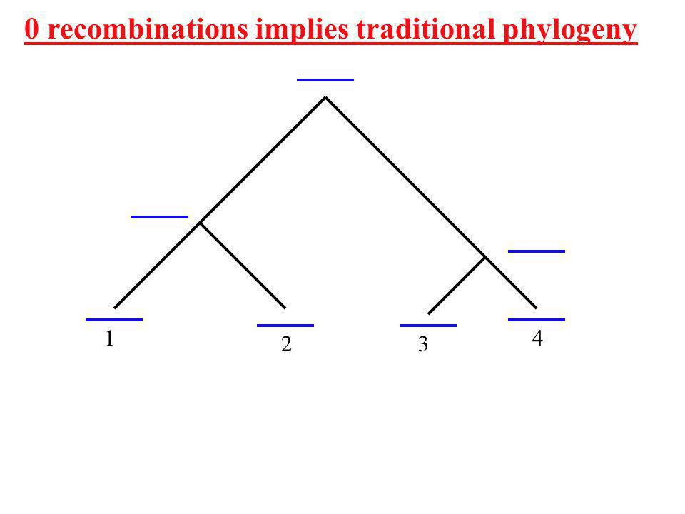 0 recombinations implies traditional phylogeny 4 32 1