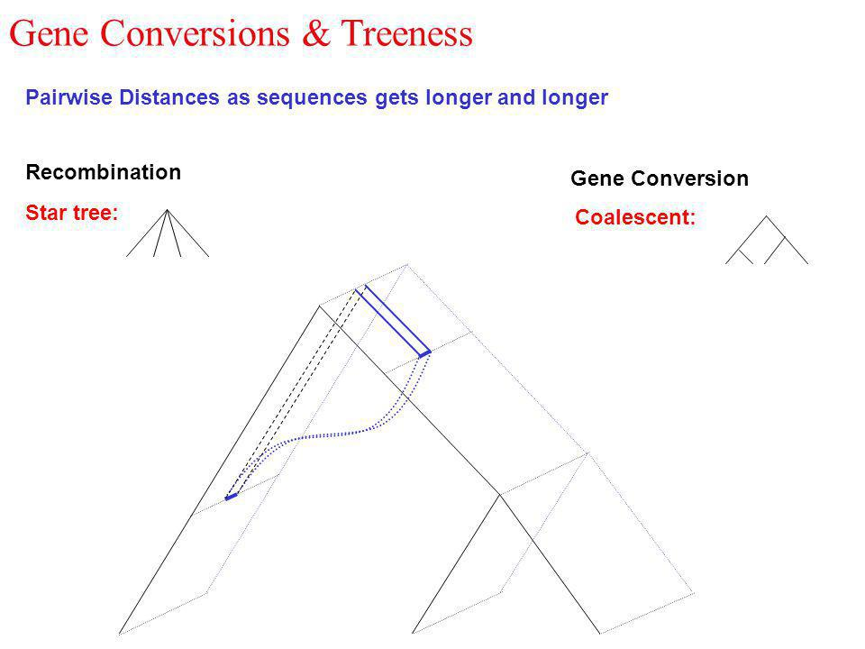 Gene Conversions & Treeness Pairwise Distances as sequences gets longer and longer Recombination Gene Conversion Coalescent: Star tree: