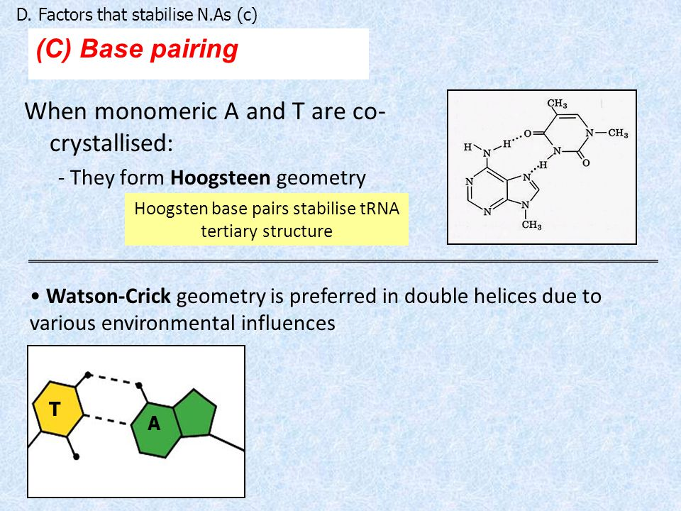 When monomeric A and T are co- crystallised: - They form Hoogsteen geometry (C) Base pairing D.