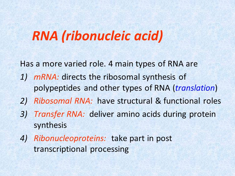 RNA (ribonucleic acid) Has a more varied role.