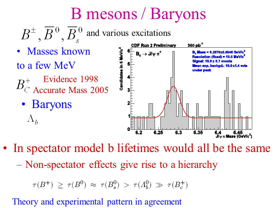 B mesons / Baryons Masses known to a few MeV and various excitations Baryons In spectator model b lifetimes would all be the same –Non-spectator effects give rise to a hierarchy Theory and experimental pattern in agreement Evidence 1998 Accurate Mass 2005