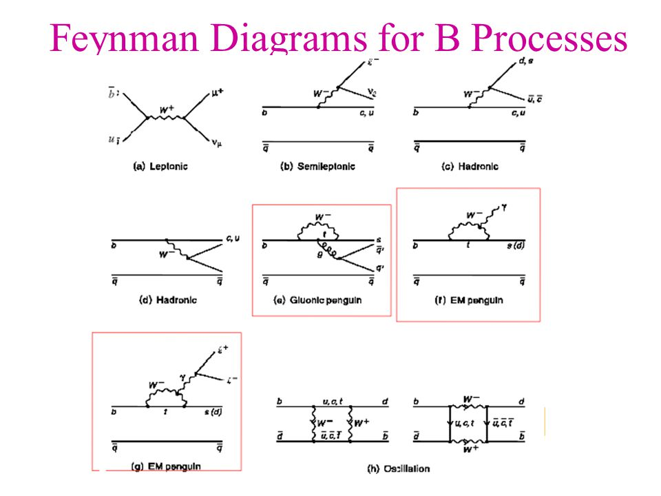 Feynman Diagrams for B Processes