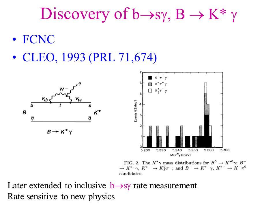 Information Sources Varenna CP violation school 2005 –http://varenna05.pi.infn.it/ –Slides taken from talks of: –Rare B Decays – H.