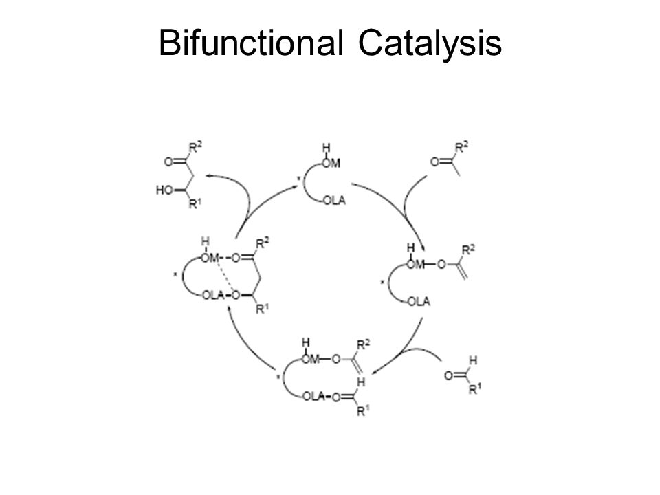 Bifunctional Catalysis
