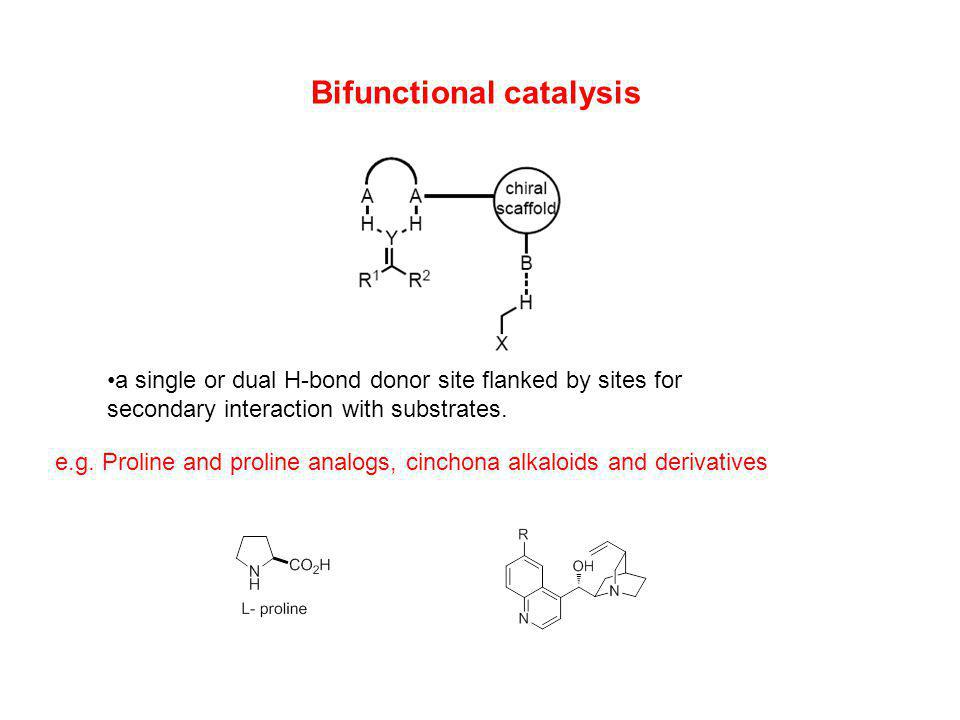 Ureas and Thioureas Originally developed as ligands for lewis acidic metals.