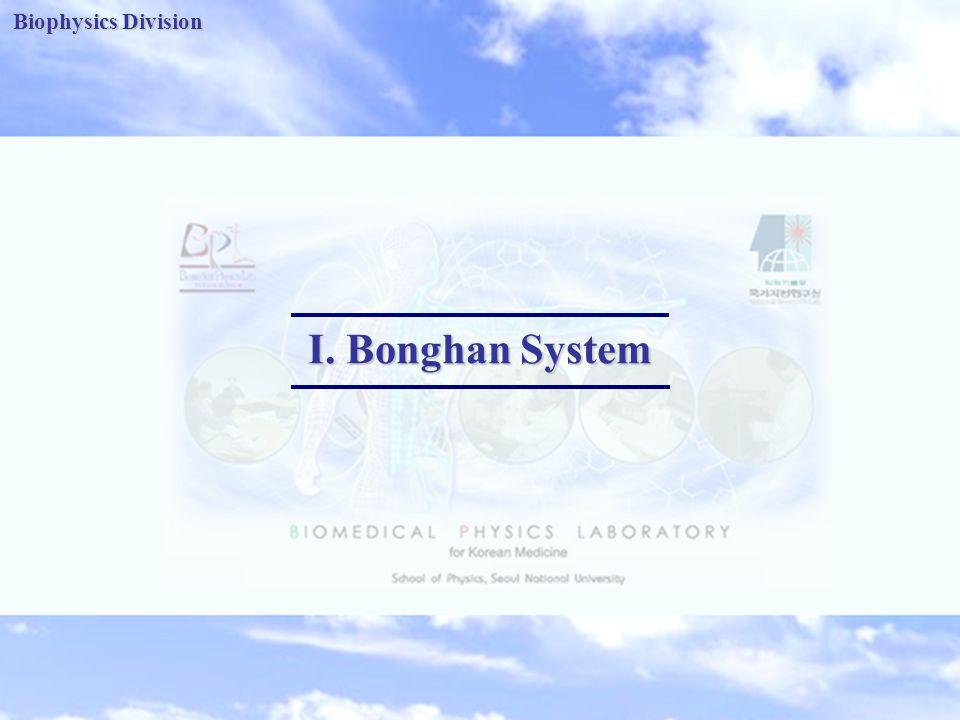 Biophysics Division I. Bonghan System