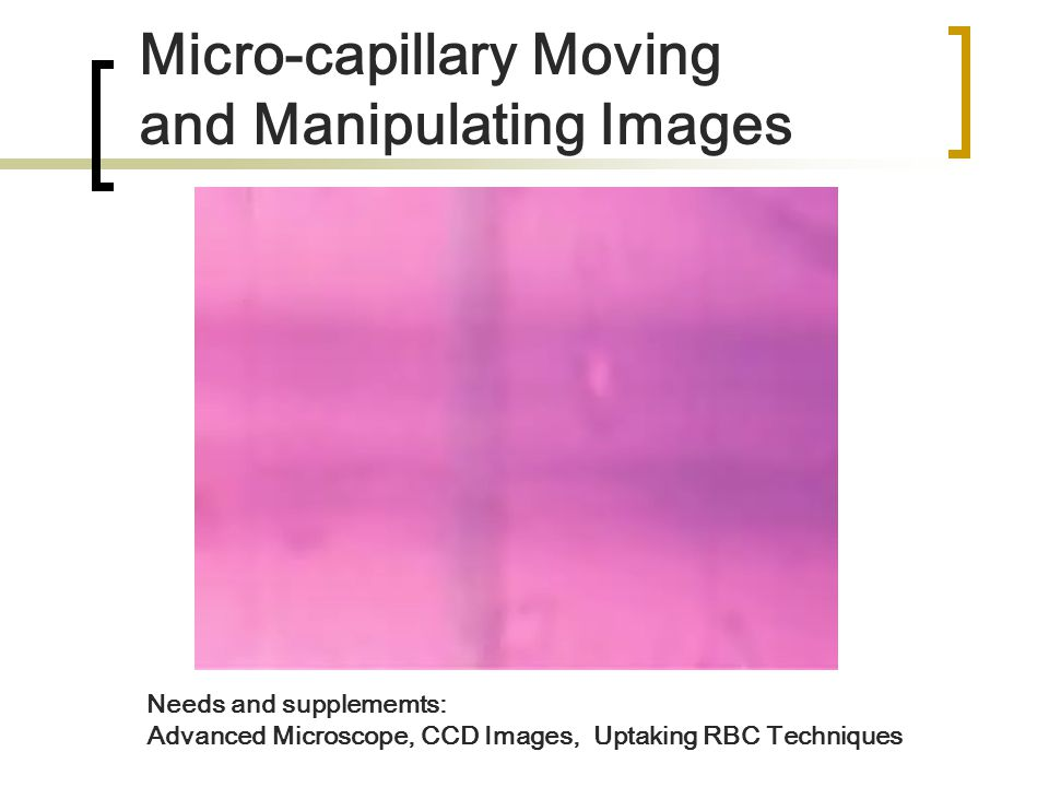 Micro-capillary Moving and Manipulating Images Needs and supplememts: Advanced Microscope, CCD Images, Uptaking RBC Techniques