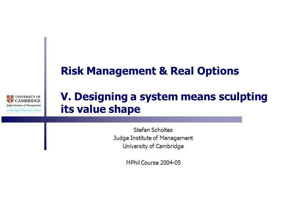 Risk Management & Real Options V.