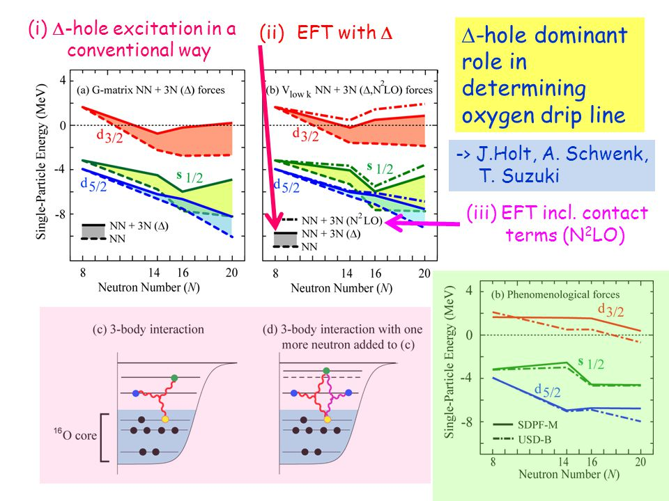 (i)  -hole excitation in a conventional way  -hole dominant role in determining oxygen drip line (ii)EFT with  (iii) EFT incl.