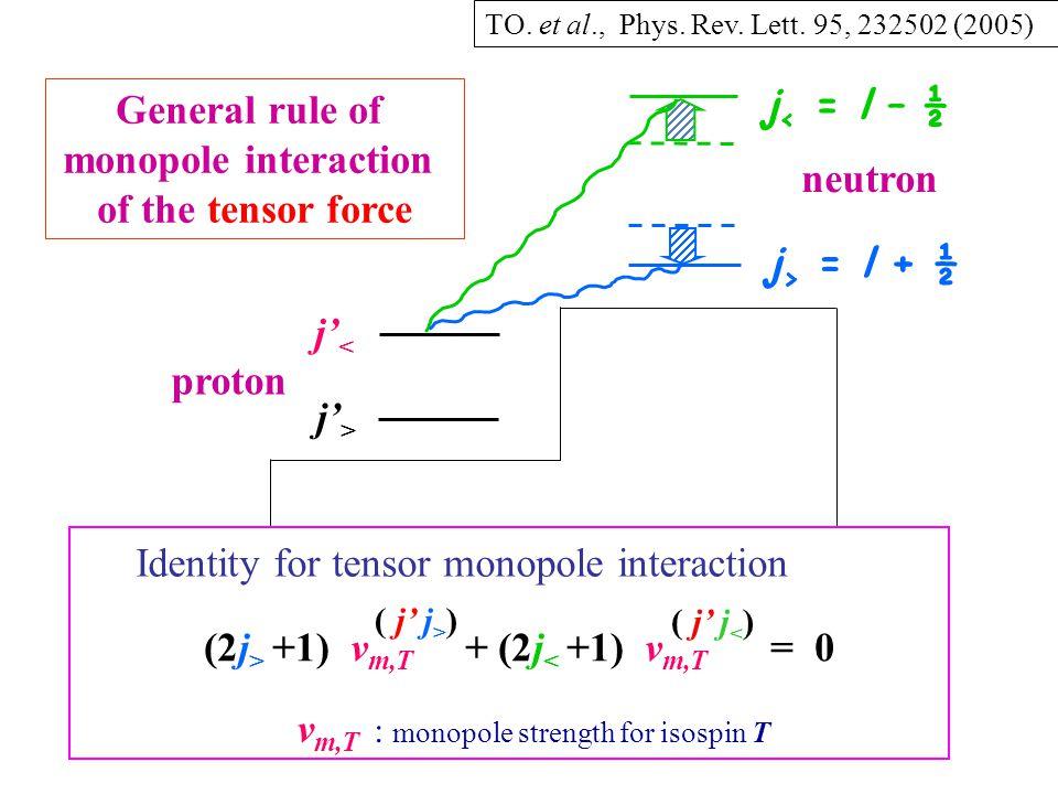 j > = l + ½ j < = l – ½ j' < proton neutron j' > General rule of monopole interaction of the tensor force Identity for tensor monopole interaction (2j > +1) v m,T + (2j < +1) v m,T = 0 ( j' j > ) ( j' j < ) v m,T : monopole strength for isospin T TO.