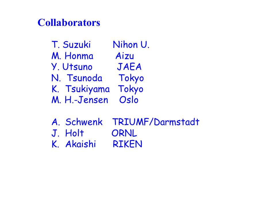 Collaborators T. Suzuki Nihon U. M. Honma Aizu Y.