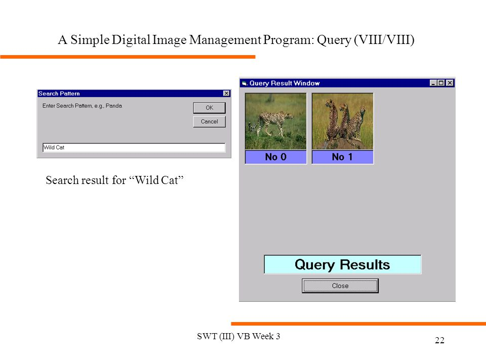 SWT (III) VB Week 3 22 Search result for Wild Cat A Simple Digital Image Management Program: Query (VIII/VIII)