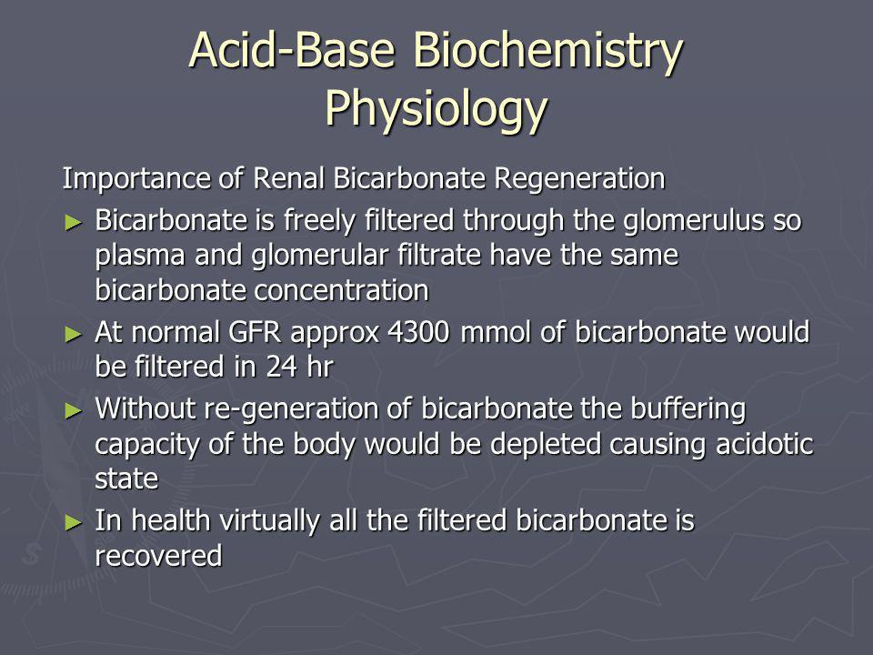 Acid-Base Biochemistry Physiology Importance of Renal Bicarbonate Regeneration ► Bicarbonate is freely filtered through the glomerulus so plasma and g