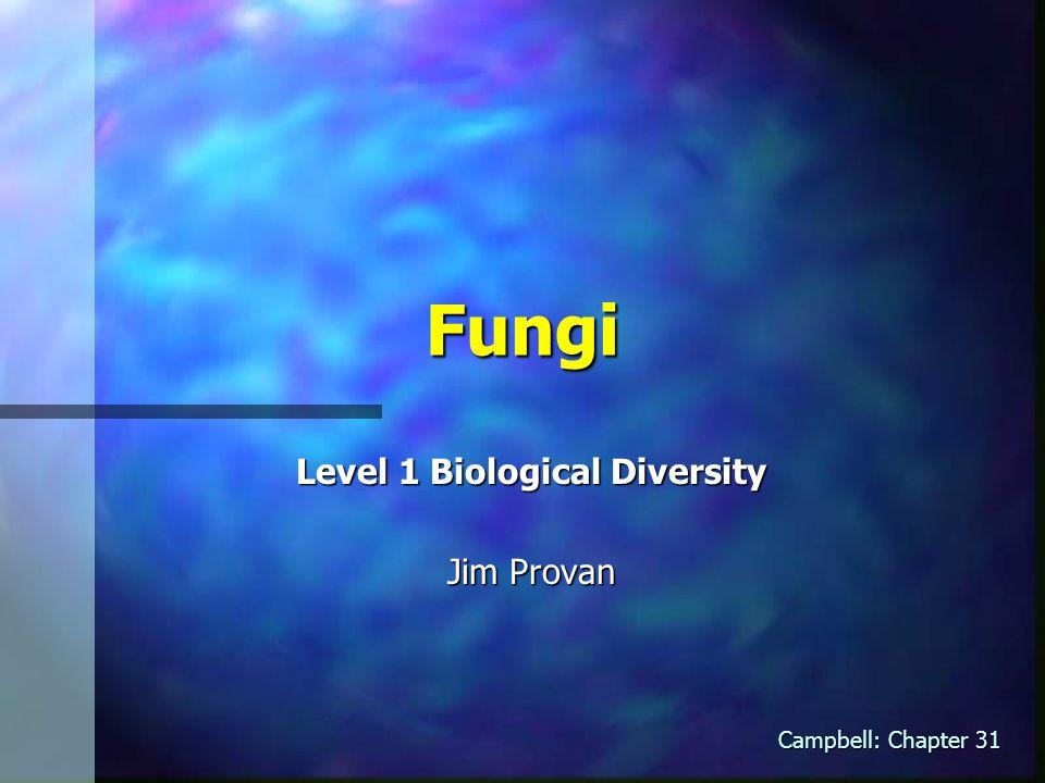 Fungi Level 1 Biological Diversity Jim Provan Campbell: Chapter 31