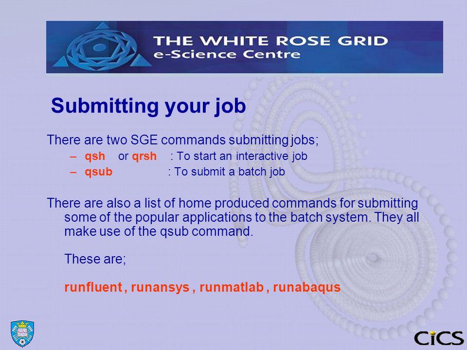 Managing Jobs Job output files When a job is queued it is allocated a jobid ( an integer ).