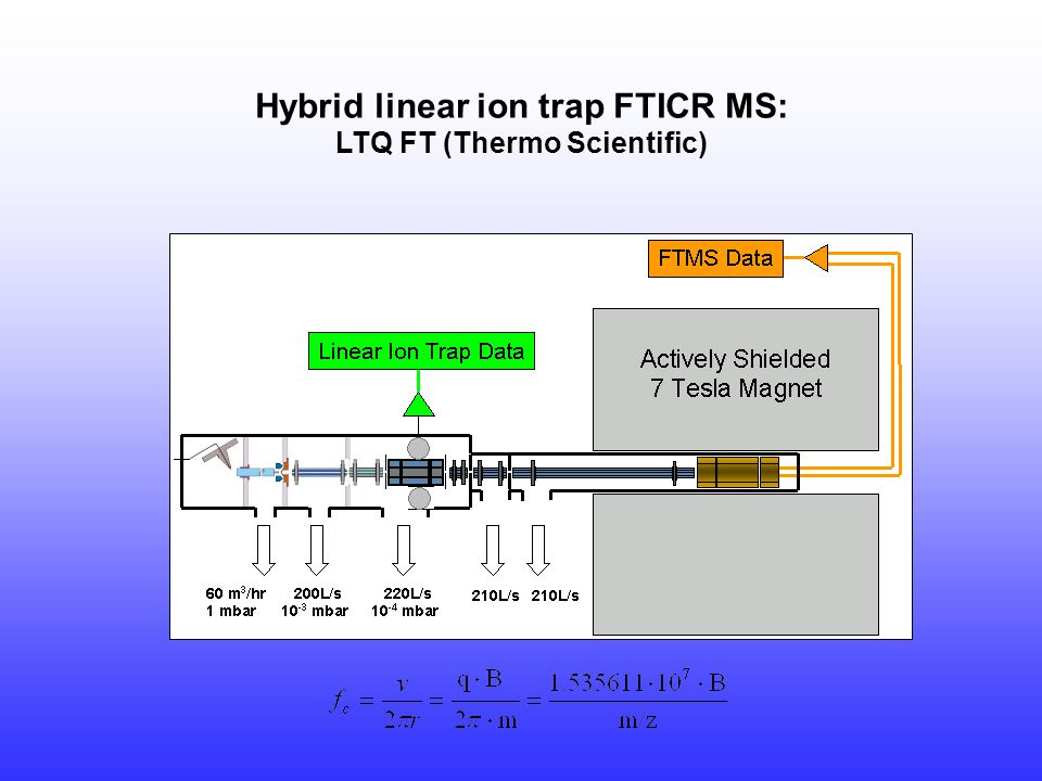 Hybrid linear ion trap FTICR MS: LTQ FT (Thermo Scientific)