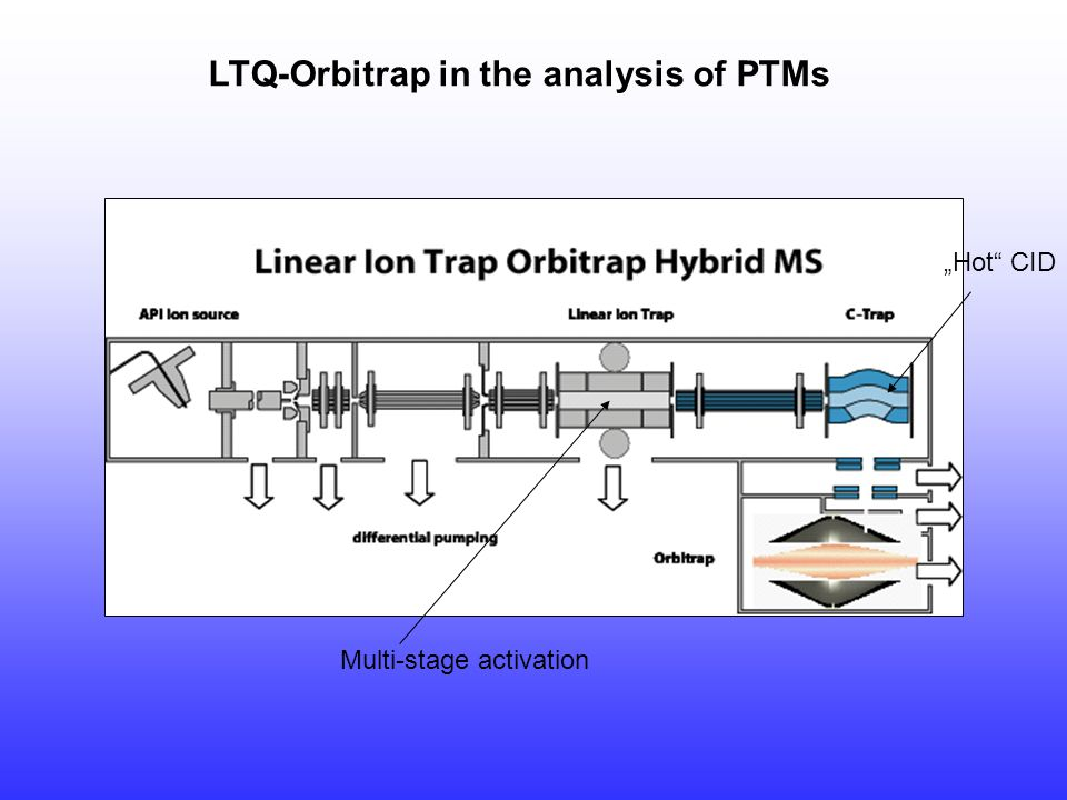 "LTQ-Orbitrap in the analysis of PTMs Multi-stage activation ""Hot"" CID"