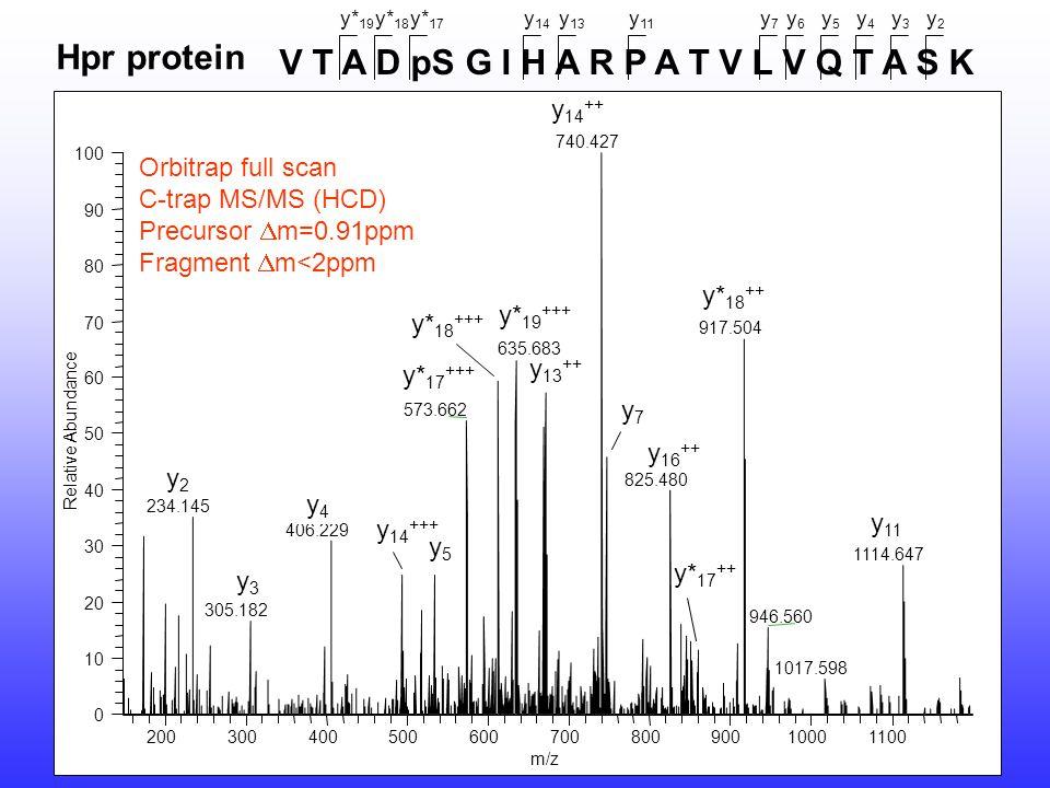 V T A D pS G I H A R P A T V L V Q T A S K y2y2 y3y3 y4y4 y5y5 y6y6 y7y7 y 11 y 13 y 14 y* 17 y* 18 y* 19 Hpr protein Orbitrap full scan C-trap MS/MS (HCD) Precursor  m=0.91ppm Fragment  m<2ppm