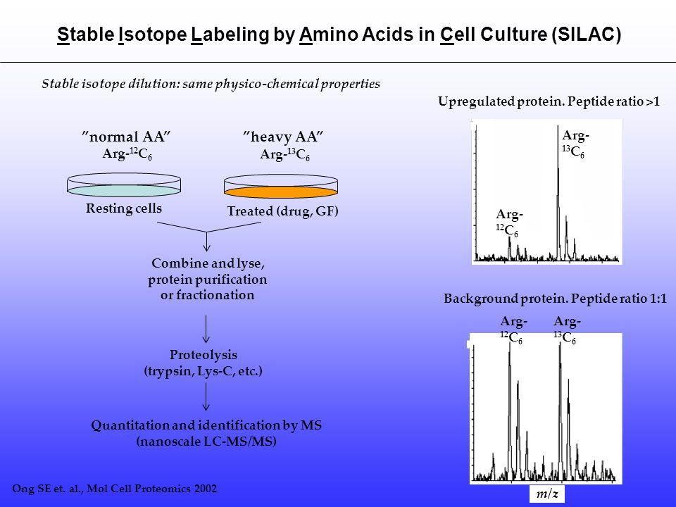 # of genes Expressed Previous studiesThis study P-proteinsP-sitesP-proteinsP-sites Bacillus subtilis 168* 4100 60% (log) 131678 *Macek et al.