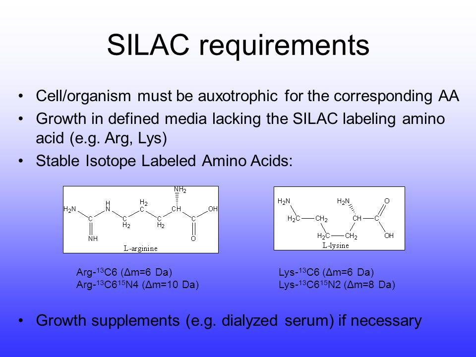 Cell/organism must be auxotrophic for the corresponding AA Growth in defined media lacking the SILAC labeling amino acid (e.g. Arg, Lys) Stable Isotop