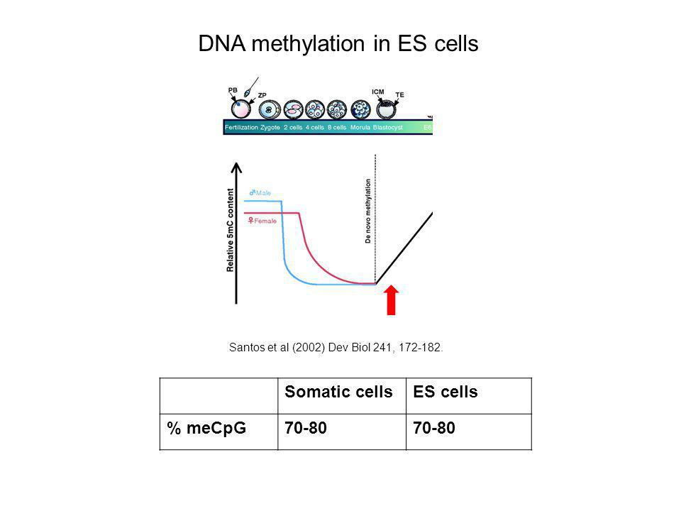 DNA methylation in ES cells Somatic cellsES cells % meCpG70-80 Santos et al (2002) Dev Biol 241, 172-182.