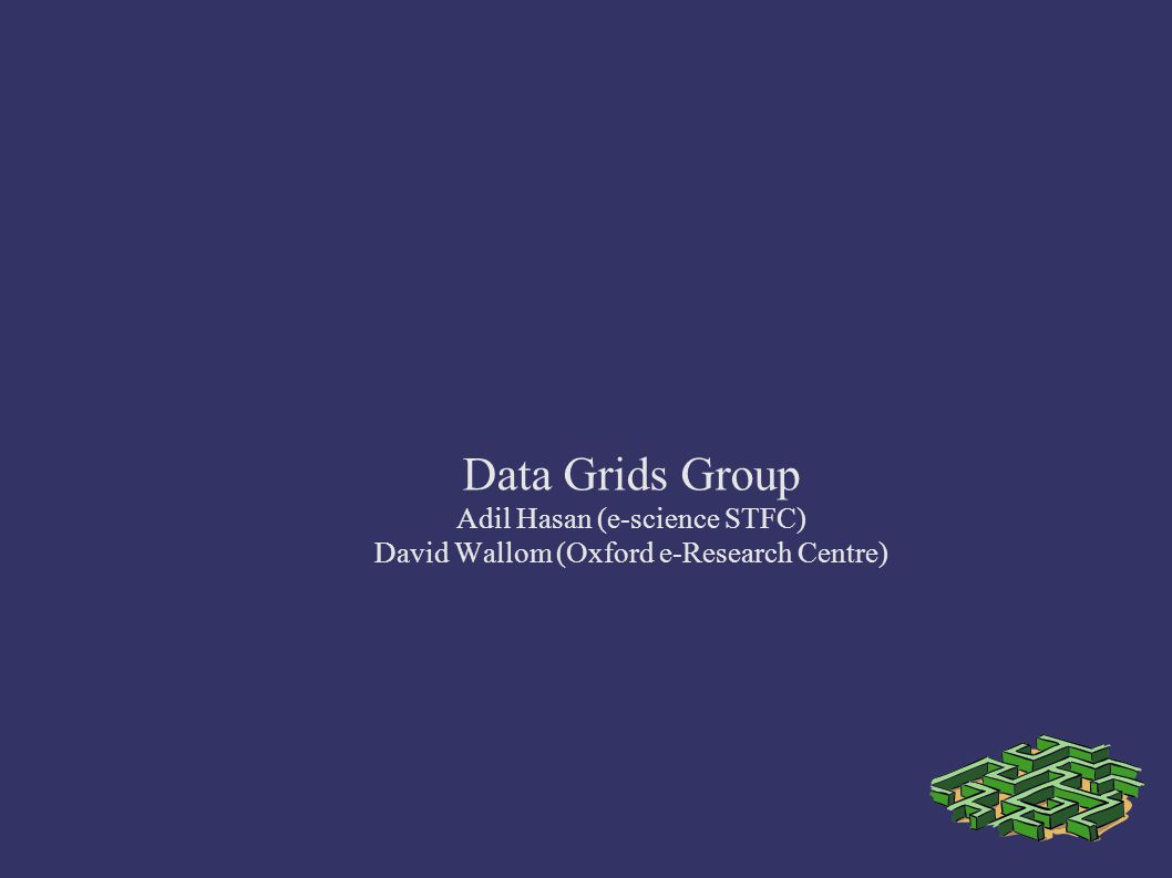 Data Grids Group Adil Hasan (e-science STFC)‏ David Wallom (Oxford e-Research Centre)‏