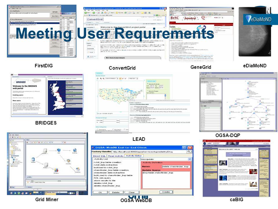 LEAD GeneGrid caBIG BRIDGES OGSA WebDB FirstDIG ConvertGrid eDiaMoND OGSA-DQP Grid Miner Meeting User Requirements