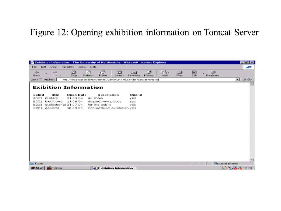 Figure 12: Opening exhibition information on Tomcat Server