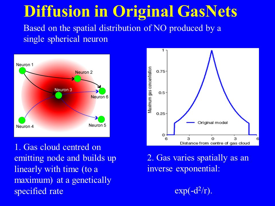 Diffusion in Original GasNets 1. Gas cloud centred on emitting node and builds up linearly with time (to a maximum) at a genetically specified rate 2.