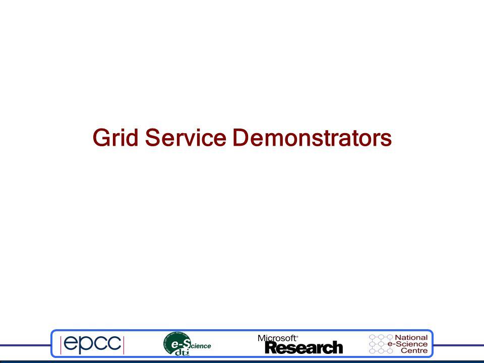 Grid Service Demonstrators