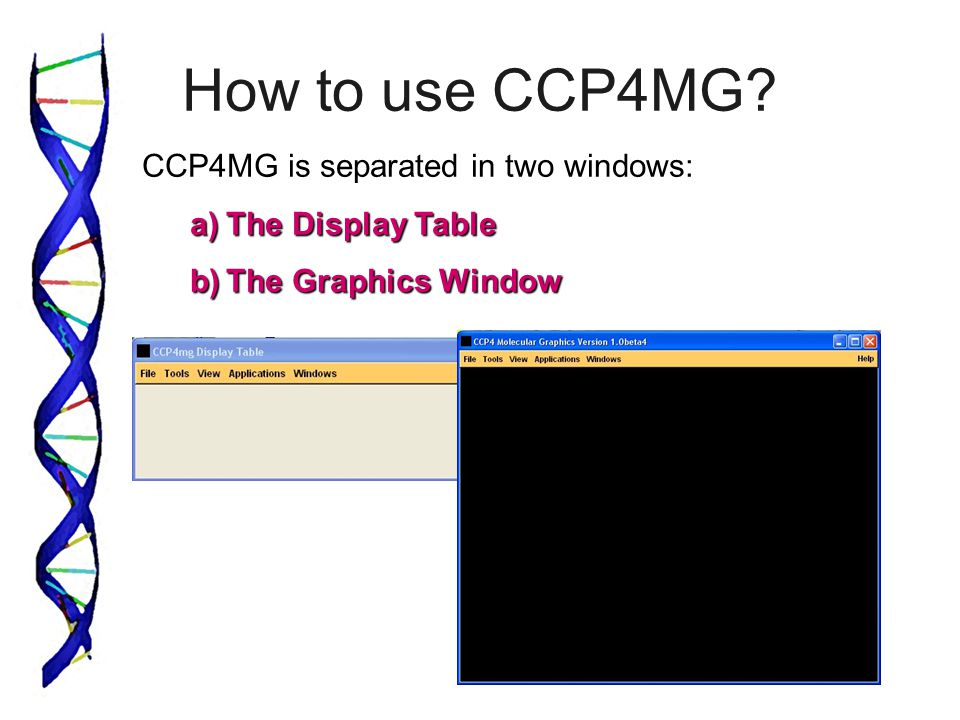 How to use CCP4MG? CCP4MG is separated in two windows: a)The Display Table b)The Graphics Window