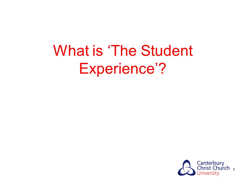 'The Student Experience' Snaith and Stephenson, 2010 LEARN AND GAIN AN AWARD CURRICULU M ACCESSIBILITY PHYSICAL SPACE PRICE OF SANDWICHES EMPLOYABILITY INTEGRATION INTERNAL/EXTERNAL ENVIRONMENT