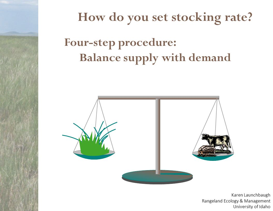 How do you set stocking rate? Four-step procedure: Balance supply with demand Karen Launchbaugh Rangeland Ecology & Management University of Idaho
