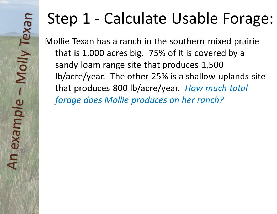 Step 1 - Calculate Usable Forage: Mollie Texan has a ranch in the southern mixed prairie that is 1,000 acres big. 75% of it is covered by a sandy loam